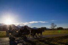 Pferdekutschenfahrt am Abend
